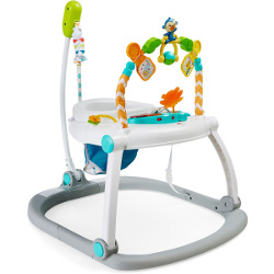 Fisher Price jumperoo 250