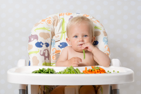 veggies in baby food 474