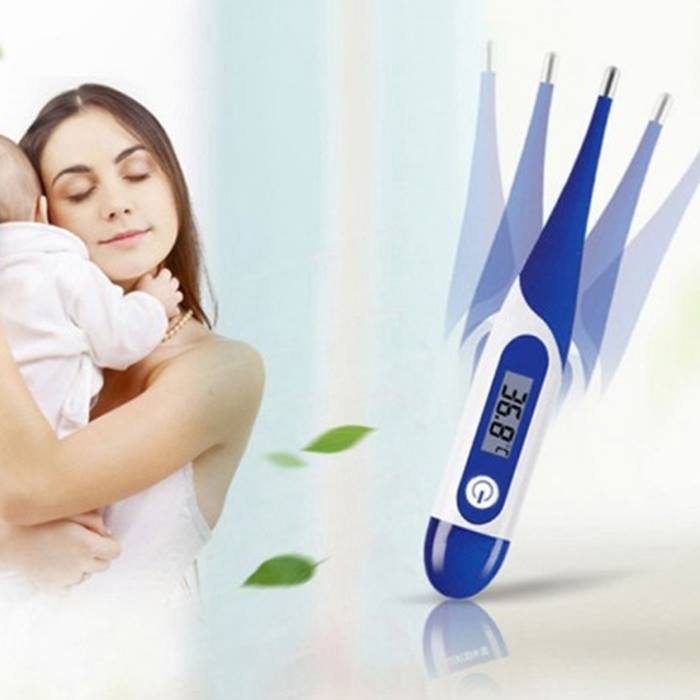 Oral Thermometer