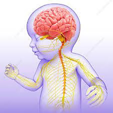Image for hydrocephalus 474